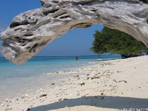 03H/02M LOMBOK   HONEYMOON PACKAGE 2 FULLDAY GILI TRAWANGAN TOUR